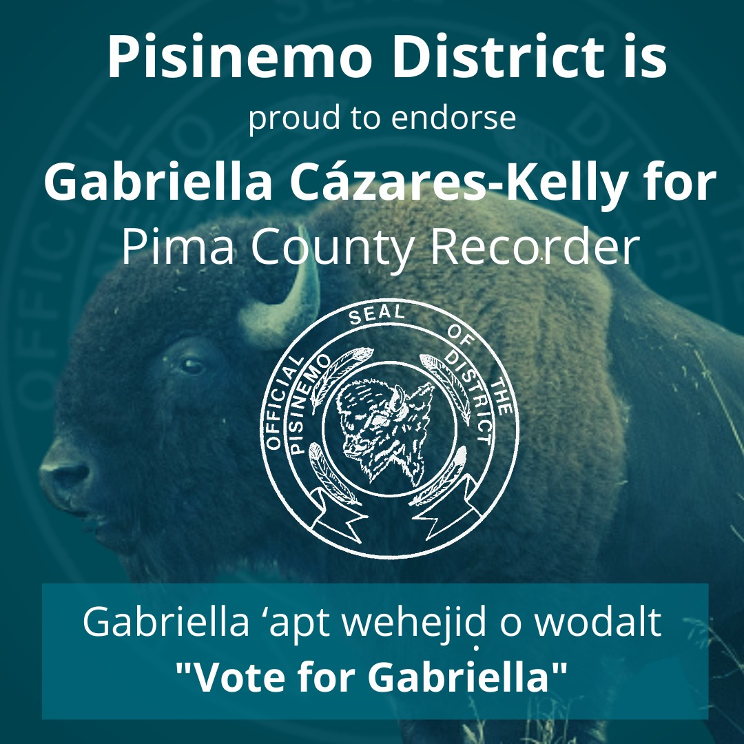 "Image: Blue graphic with the image of a buffalo in the background. Text in white reads: Pisinemo District is proud to endorse Gabriella Cázares-Kelly for Pima County Recorder. Gabriella 'apt wehejid o wodalt ""Vote for Gabriella!"" The District Seal is in the center and reads ""Official Seal of The Pisinemo District"" a drawing of a buffalo head is at the center with 4 feathers surrounding it."
